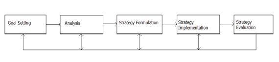 literature review strategic management process