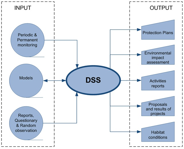 marketing decision support system case study International journal of business, marketing, and decision sciences volume 3, number 2, fall 2010 25 a model for quantifying strategic supplier.