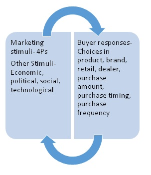 response to stimuli cxc 2014 It all revolves around the mystery of consumer buying behavior question of how consumers will respond to different marketing efforts and stimuli.