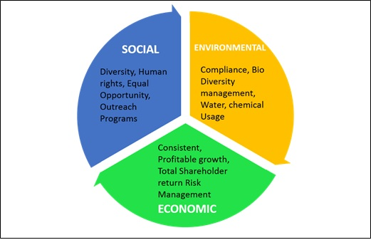 the concept of triple bottom line Understand the triple bottom line concept of sustainability and how to apply it to your business.