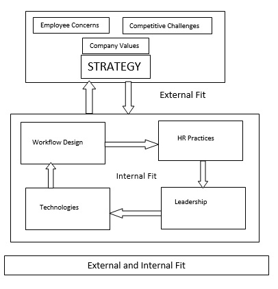 Perfect External Fit Is Essential To Improve The Performance Of The Firm. It Has  Been Found That Firms Which Have Better External Fit Between Strategy And  HR ...