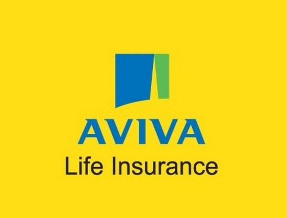 Top 10 Insurance Companies In India 2016 Mba Skool Study