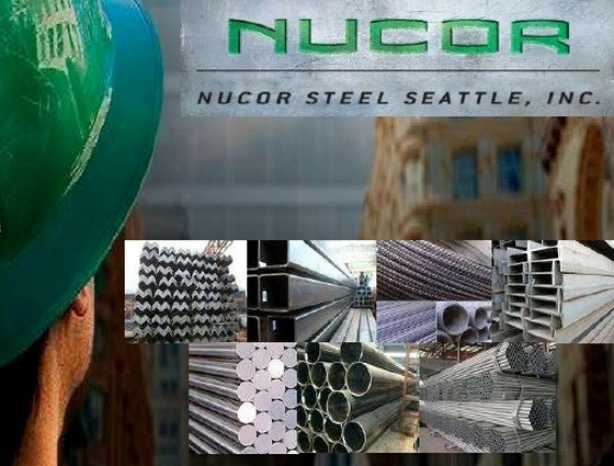 nucors strategy in the steel industry essay View essay - bus 599 nucor from ba 225 at university of phoenix 1 discuss the trends in the steel industry and how it may impact nucors strategy in 1910 till the year 1960, the first position in.