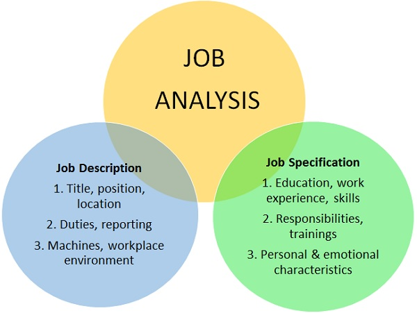 Job Analysis Definition  Human Resources Hr Dictionary  Mba