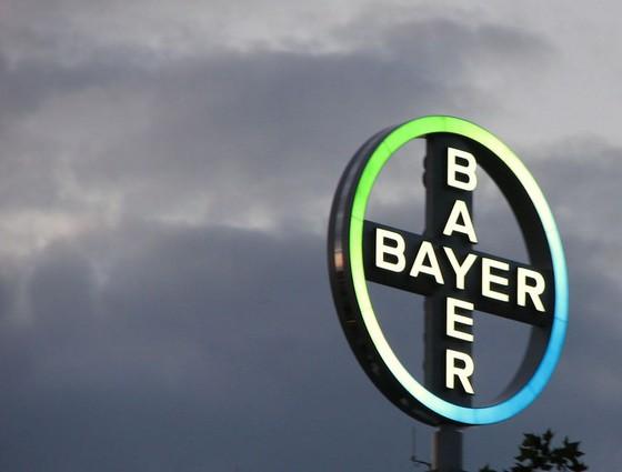 bayer brand