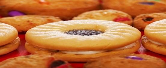 demand estimation for britannia biscuit industry Como figura la veralipride y como quiera que no podemos traducirlo todo- solo hemos podido traducir del holandÉs al espaÑol  exponemos el poco traducido y el resto tal cual- fijarse bien en la web.