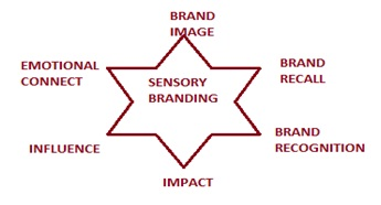 sensory branding This video examines the effects of sensory branding on consumer behavior in walt disney world it is supported by peer reviewed, scholarly research.