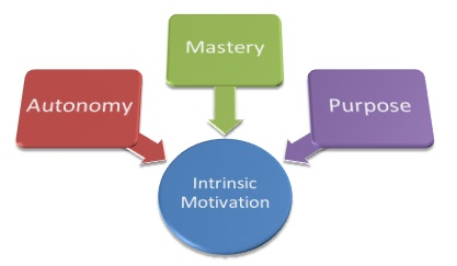 purposes of performance management and their relationships to business objectives Describe the purpose of performance management and its relationship to business objectives  develop objectives based on their set goals but the common objectives of businesses are to 1 .