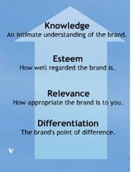 Understanding Brand Equity-Brand Asset Valuator Model(BAV model)