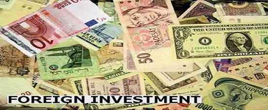 advantages of fiis in indian markets Fiis are contributing to the foreign exchange inflow as the funds from multilateral finance institutions and fdi are insufficient, says abhijit roy the recent spat over the tax authorities issuing notices to foreign institutional investors (fiis) which take advantage under the indo-mauritius bouble taxation avoidance agreement, has once again drawn attention to the role that fii investment is playing in the capital markets in india.